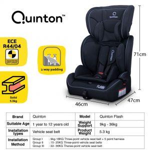 Quinton Flash size