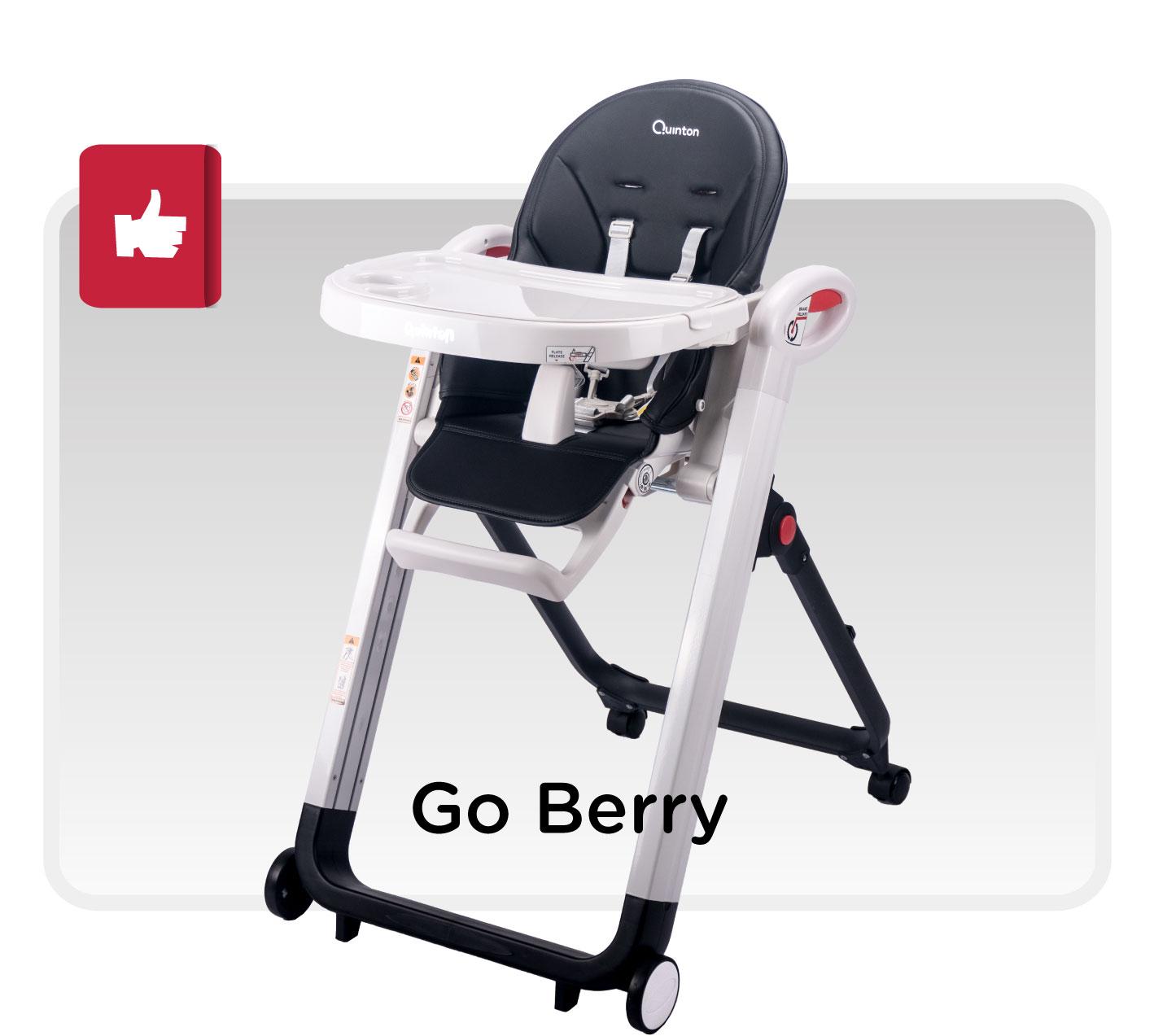 Quinton Go Berry High Chair